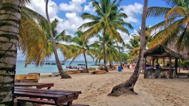 Geld verdienen im Internet am Traumstrand in der Karibik